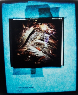 Schuyler Duffy: feuille, Ceci, Ici, Toi, Moi, c-print, 4x5 ft., 2012.