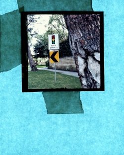 Schuyler Duffy: photo Enforced II, c-print, 4x5 ft., 2010.
