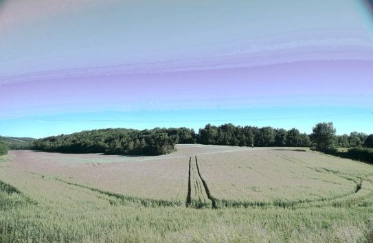 Schuyler Duffy: path.psd, 2011.