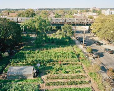 UCC-youth-garden