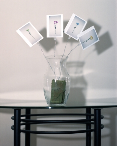 RyanOskin_Instant_Flower_Arrangement